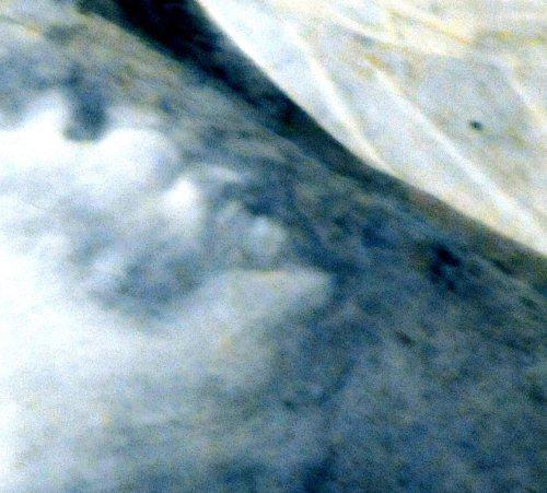 Na fresku Giotta znaleziono wchmurze profil Szatana