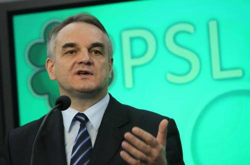 Wicepremier Pawlak nie wyklucza odstąpienia przez Polskę odACTA