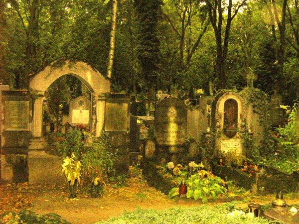 Zabytkowy cmentarz w sercu jeżyckiego osiedla
