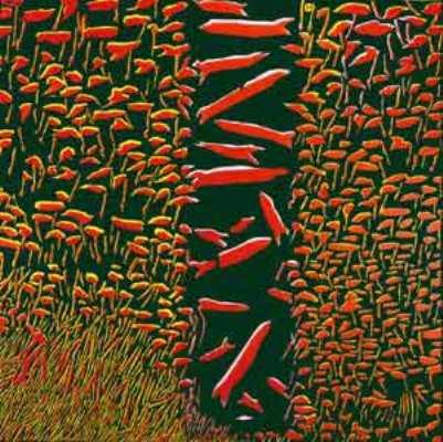 Andrzej Fogtt – malarz, który okiełznał żywioły, zapanował_nad wielością sfer i dotarł do artystycznej genezy
