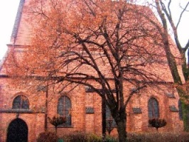 Gotycki kościół z dawnej osady Świętym Marcinem zwanej.