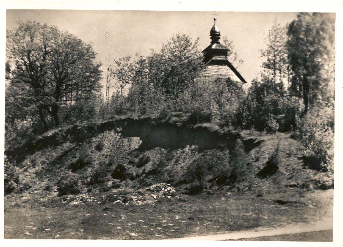 Wołkowicze
